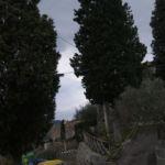 Sullo sfondo il castello di Montemolino